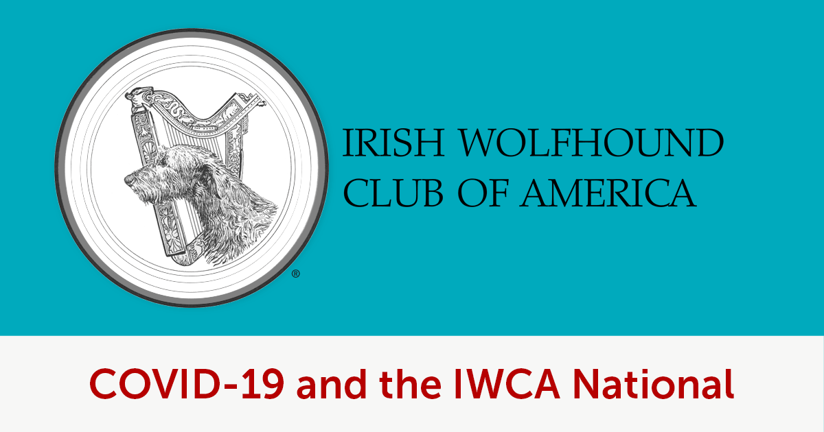 March 15 post: COVID-19 and the IWCA National
