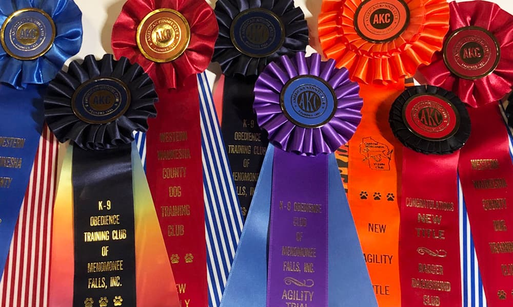 Ribbons from dog events