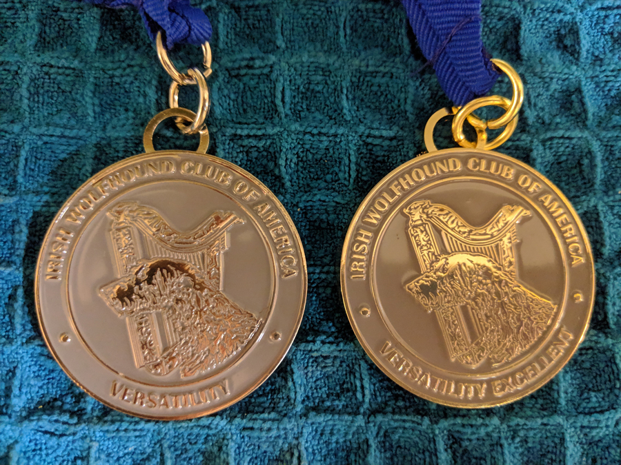 VC and VCX Medallions